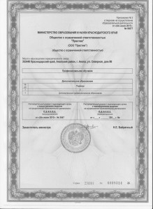 лицензия прил2